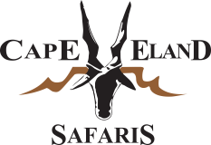 Cape Eland Safaris